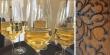 Weingläser im CaféRodenstein2